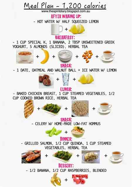 what is the 2 meal diet